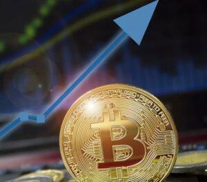 Какие криптовалюты самые перспективные?
